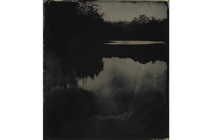 Sally Mann - Blackwater 17, 2008-2012