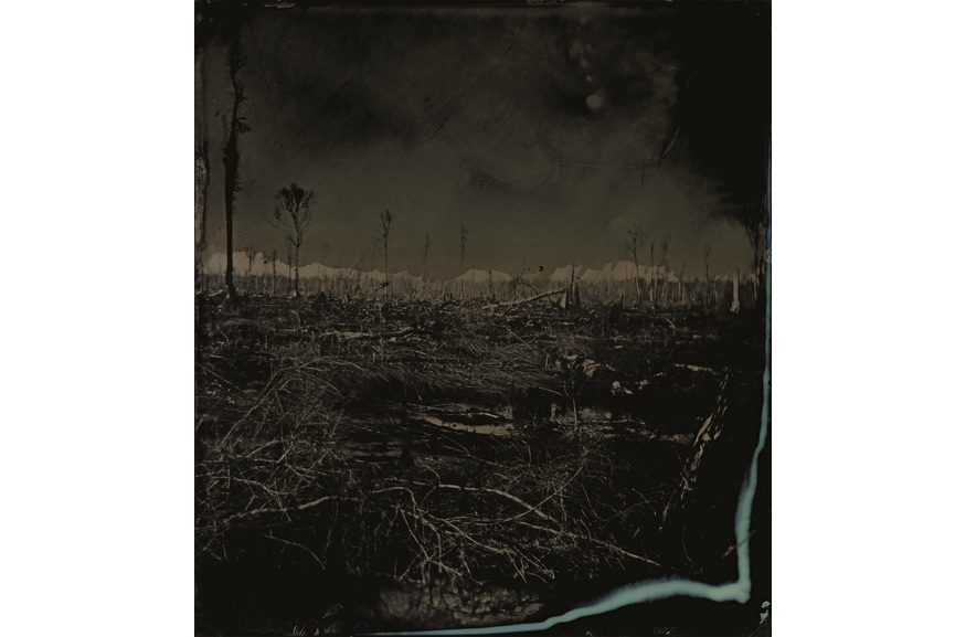 Sally Mann - Blackwater 3, 2008-2012
