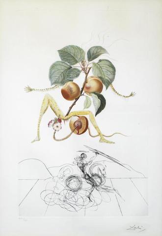 Salvador Dali-Apricot Chevalier-1970