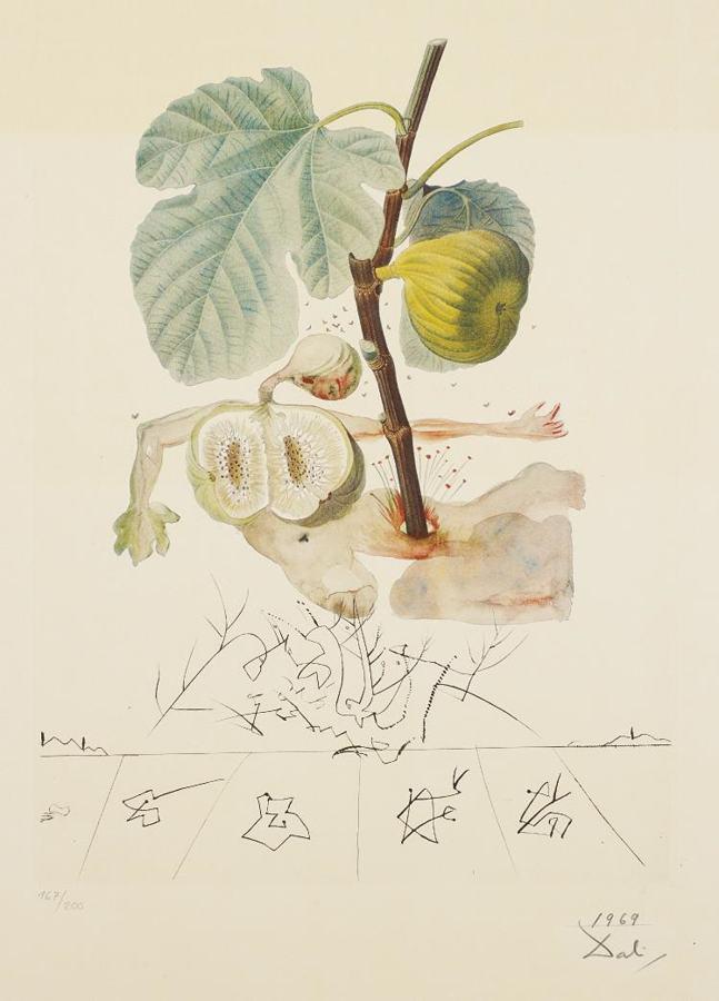 Salvador Dali-Homme figuier (Fig Man), from Flordali (Les fruits)-1970