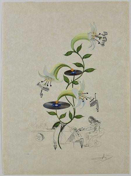 Salvador Dalí Lys (Lilium musicum) (Lily) Floridali (Flor Dalinae), 1968