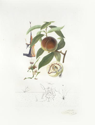 Salvador Dali-Penitent Peach Tree (Pecher Penitent), from Flordali (Les Fruits)-1969