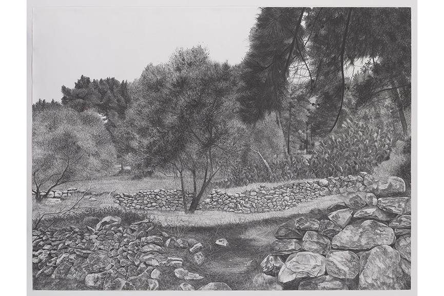 Samah Shihadi - Landscape