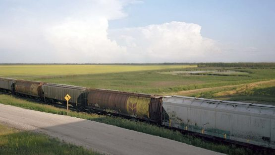 Scott Conarroe - Canola Train, Manitoba, detail (By Rail series), 2008
