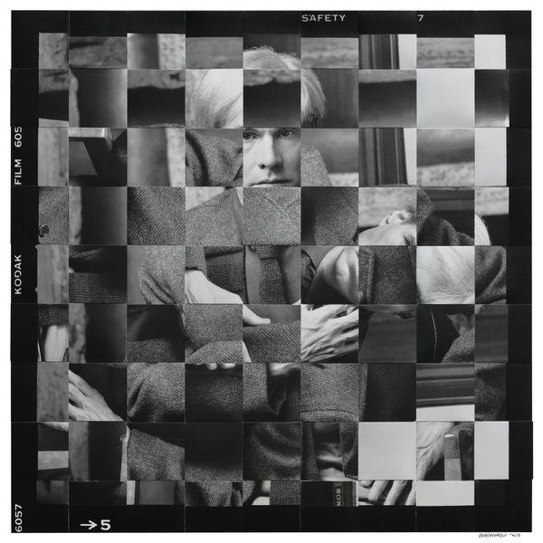 Serena Maisto, De-composition Andy 2, large strip 50x50 cm
