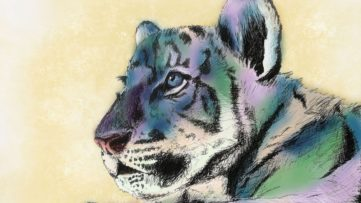 ShadowMonsterBear - Tiger Cub (detail), 2019