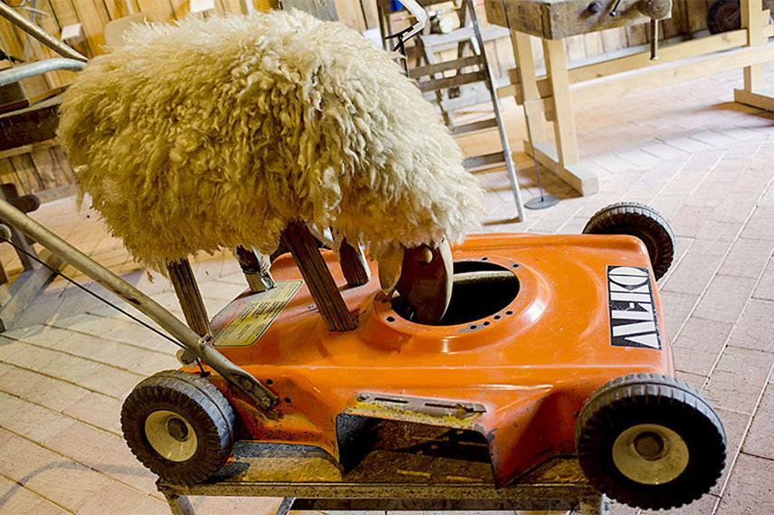 An environmentally friendly lawnmower