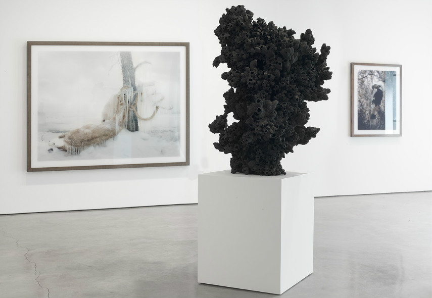 Simen Johan - Untitled #159, 2010 (painting) - Untitled #170, 2011 (sculpture), installation view kingdom series work comes gallery milo yossi