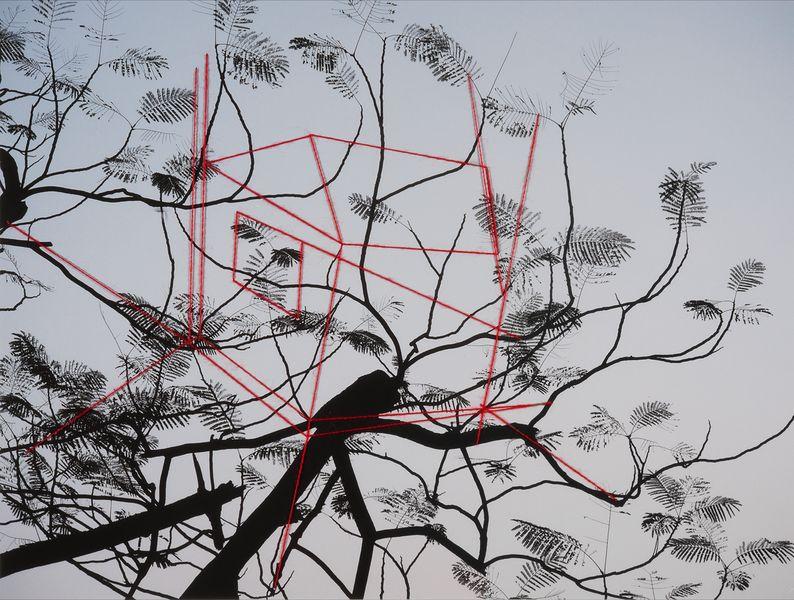 Stefania Beretta - Improbable Landscape #61, 2017