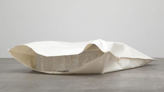 Susumu Koshimizu - Paper (2011)