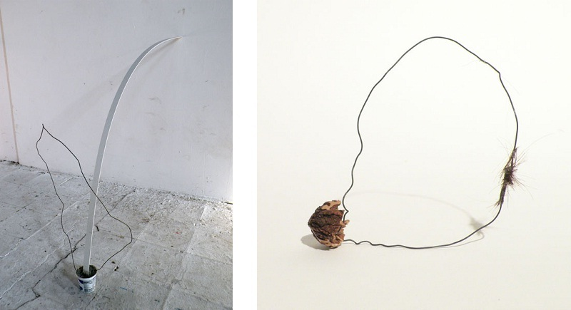 Suzanne Goldenberg - Ingrown, 2012 (left ) / Pealed Away, 2013 (right)