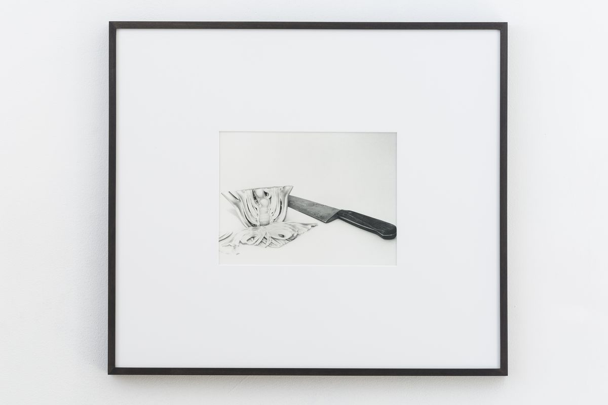 Talia Chetrit - Fennel, 2017