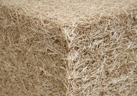Untitled (Toothpicks), 2004 (detail)