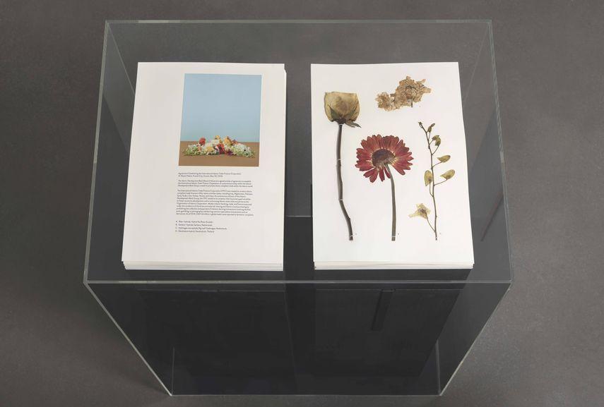 Taryn Simon exhibition