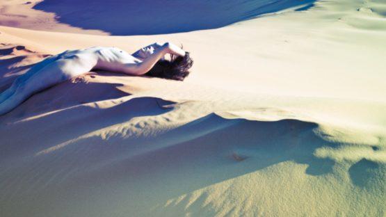 Teresa Flowers - Dunes Nude 10, ca 2012 (detail)
