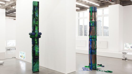 Tobias Madison at Sammlung Haubrok, installation