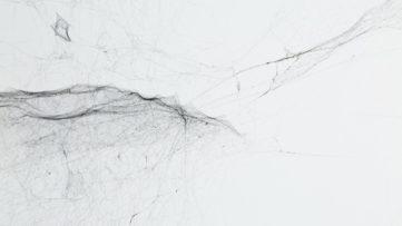 Tomas Saraceno - Solitary semi-social mapping of Ceginus
