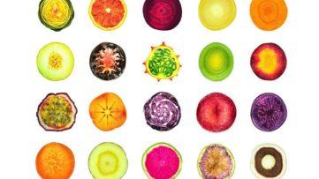 Tommy Flynn - 20 Fruits, 2015