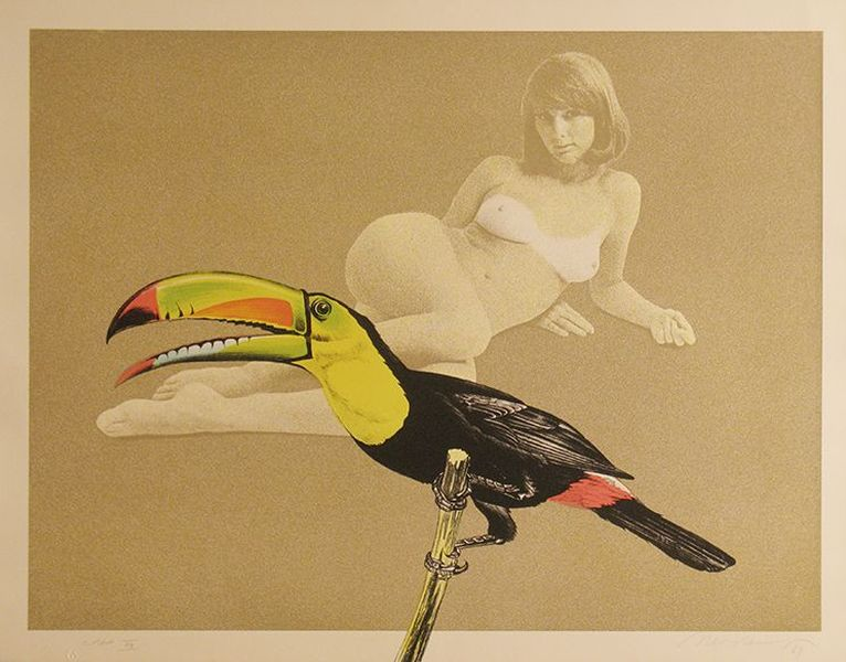 Toucan Better Than One