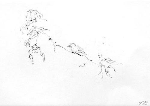 Bird on Branch-2002