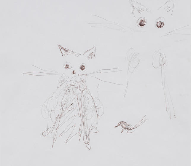 Tracey Emin-My Cat Docket-2005