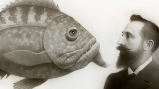 Travis Louie - detail of an artwork