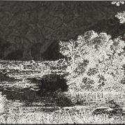 Ugo Rondinone - No. 69 Vierundzwanzigsternovemberneunzehnhundertfunfundneunzig, 1995 (Detail)
