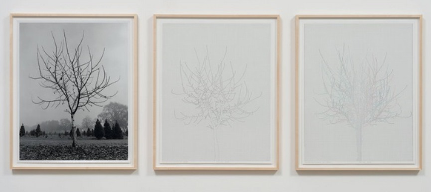 Triptych: 29 × 23 in. each; 31½ × 25½ × 1½ in. (framed) (73.66 × 58.42 cm. each; 80.01 × 64.77 × 3.81 cm. [framed]).