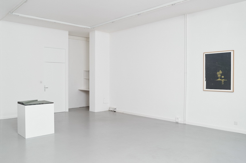 """ New York gallery established a connection with curator David from Bern galerie for new Carron project"
