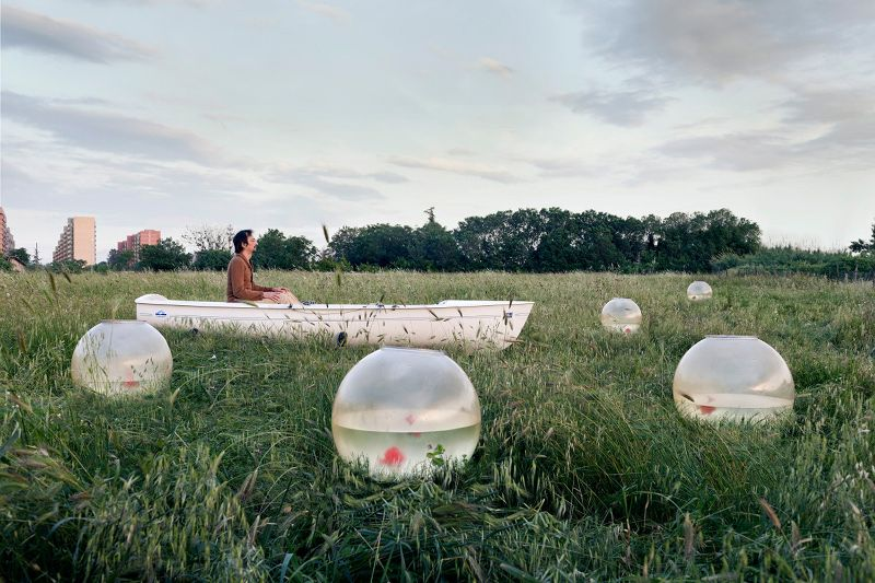V.Vannicola - Untitled, Living Layers III, 2013