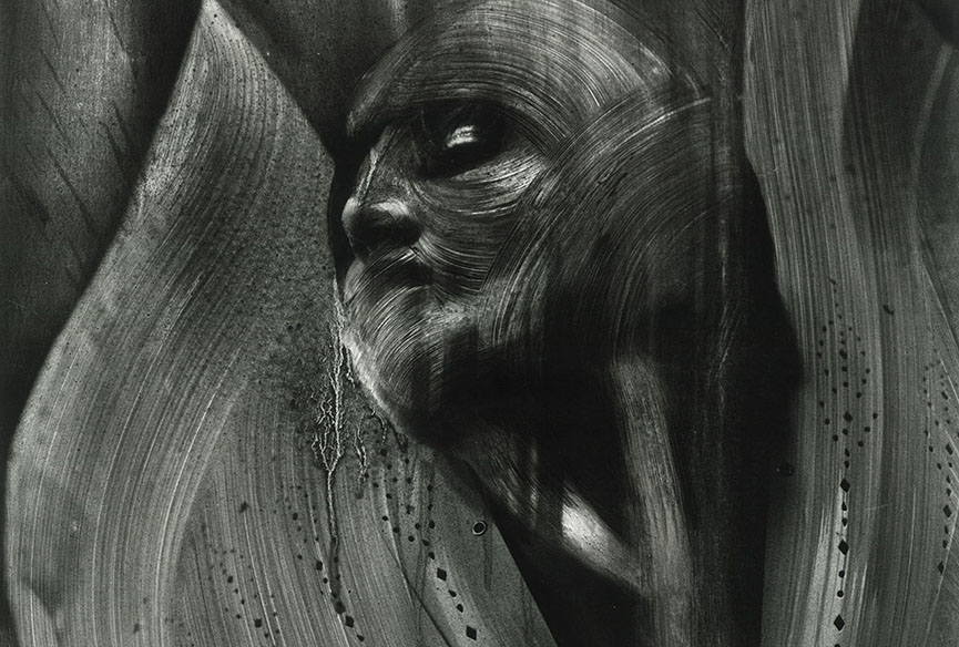 Vermibus - Cuervos En La Garganta, 2016. 252x329cm