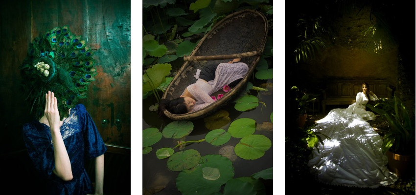 Viet Ha Tran - Modern Renaissance, 2014  / The Lotus Lake, 2014  / Like a painting, 2015