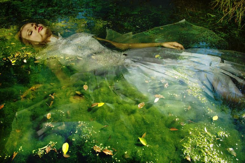Viet Ha Tran - Take me to your dreams Ophelia, 2013