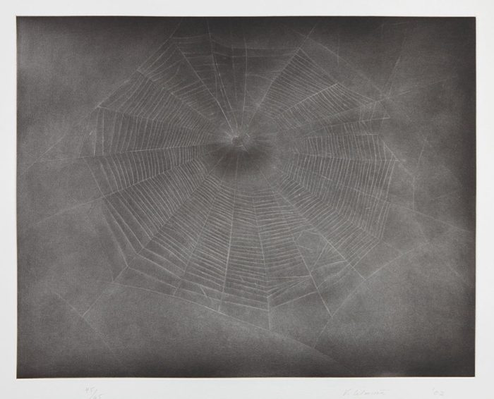 Vija Celmins-Untitled (Web 3)-2003