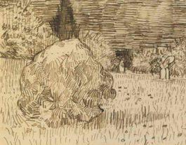 Vincent van Gogh-Jardin Public A Arles-1888