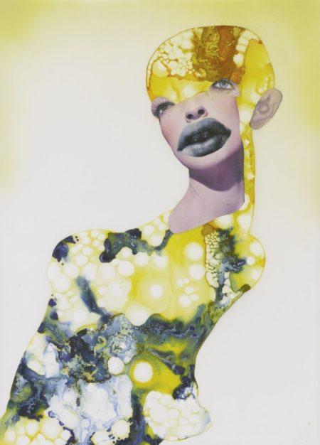 Wangechi Mutu-Untitled (Alien Awe Iii)-2003