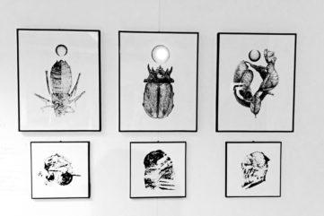Werther Banfi exhibition
