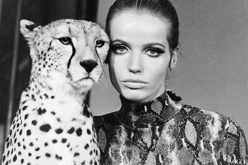 William Klein - Veruschka with Cheetah,1967 - image via thepublicprofessor.com