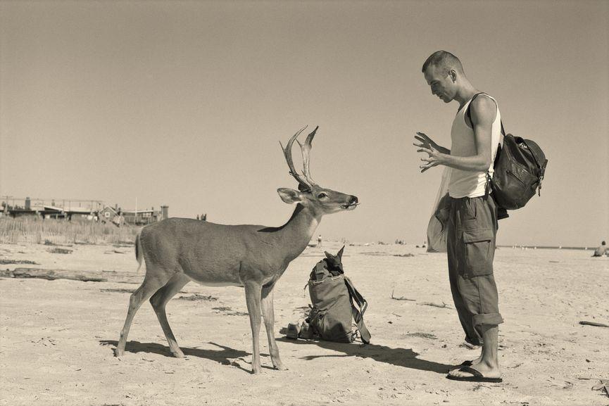 Deer Hirsch, 1995