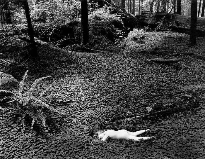 Wynn Bullock - Child in Forest, 1951, black and white
