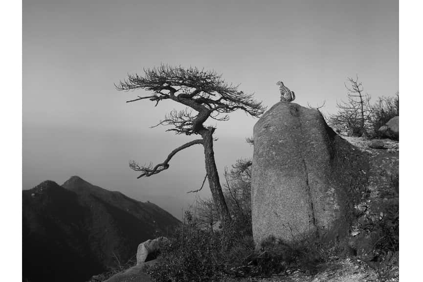 Yan Changjiang and Xiao Xuan'an - Return to Mountains 02, 2011