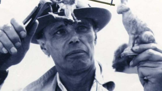 Zoa - Joseph Beuys (detail)
