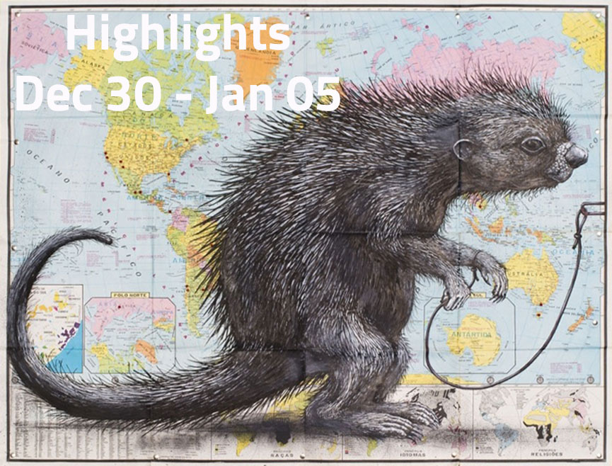 Widewalls Highlights